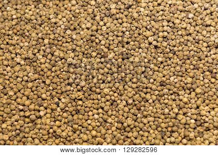 fresh Dried green peppercorn background close up