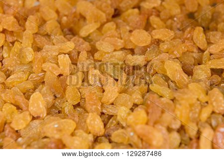 close up view of yellow dried raisin background
