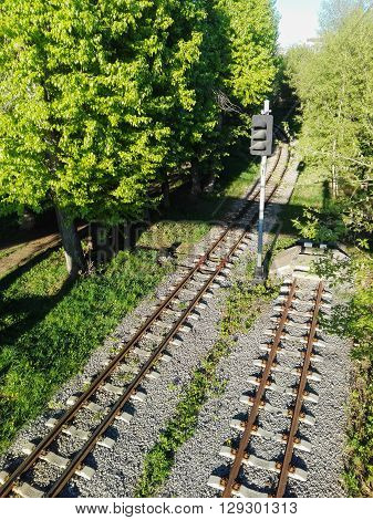 top view of the two railway tracks between the trees