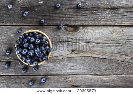 Blueberry in bowl on a dark wooden background