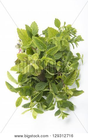 Mint herb mixi solated on white background