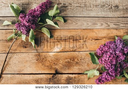 Overhead view of lilac tree flowers laid out on wooden rustic tabletop