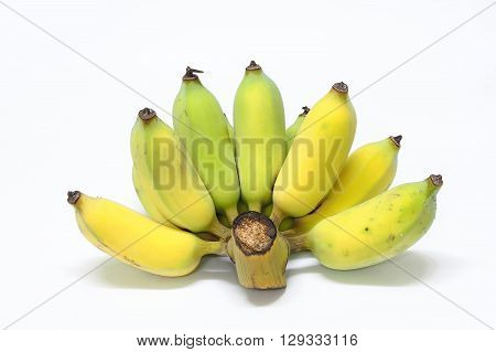One ripe pisang awak comb. On white background.