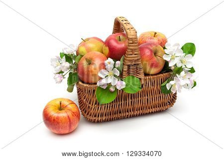ripe apples in a wicker basket on a white background. horizontal photo.