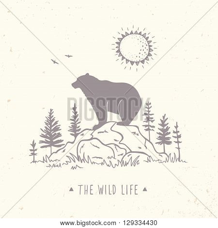 Silhouette of beautiful bear on a stone in forest. Stylish vector illustration