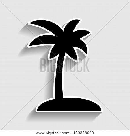 Coconut palm tree sign. Sticker style icon with shadow on gray.