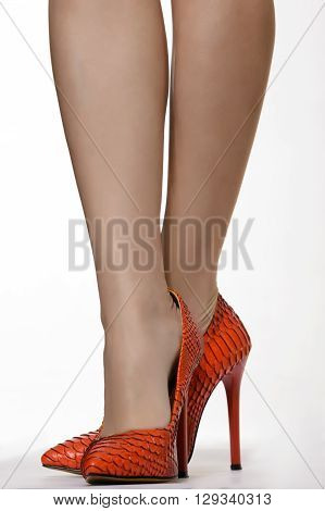 pretty female legs in red snakeskin high heels