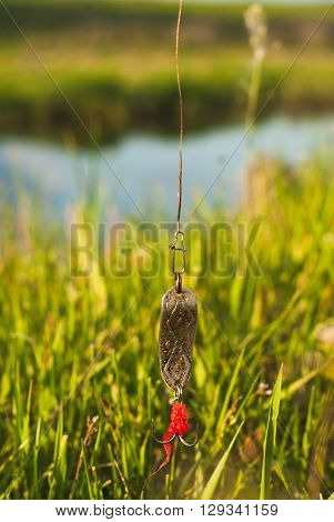 bait for catching predatory fish on a background of green grass
