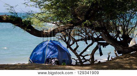 Blue Tent At Wailalea Beach