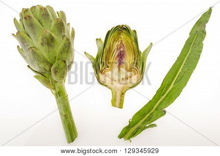 Fresh artichoke half artichoke and leaf isolated on white background.