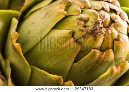 Fresh Artichoke Macro Shot With Natural Light