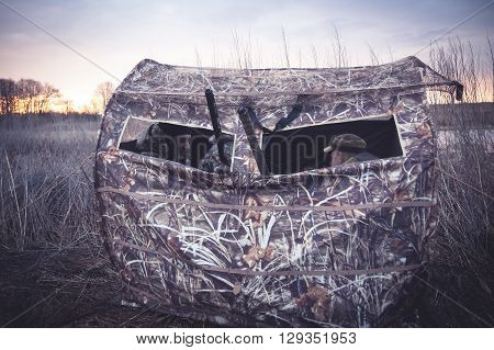Hunting tent with hunters waiting for prey in reed bushes next to the river during sunrises. Gun barrels  stick out from tent window