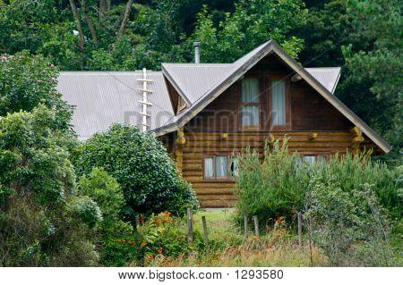 Bush Cabin