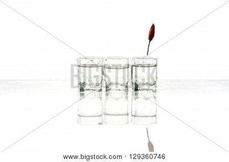 Glasses of vodka and chilli on a white background