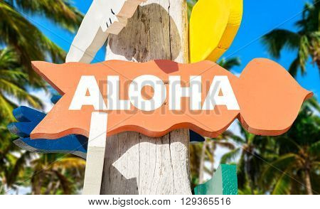 Aloha signpost with palm trees