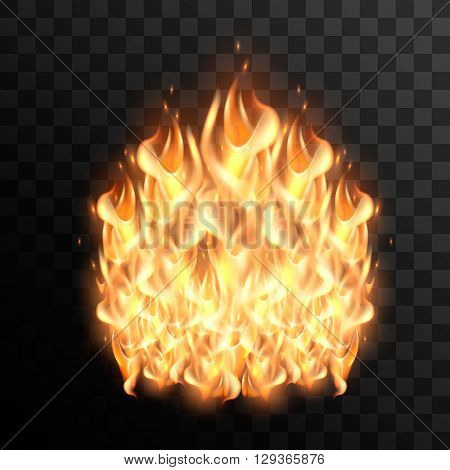 Realistic fire flames. Fire flame vector illustration on transparent background. Fire vector element for design. Vector campfire. Fire icon.