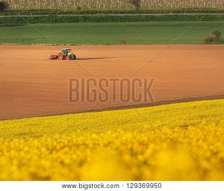 Tractor plowing a field in South Moravia at sunset beautiful view with yellow flowers yellow field and green grass Czech Republic. Agricultural landscape