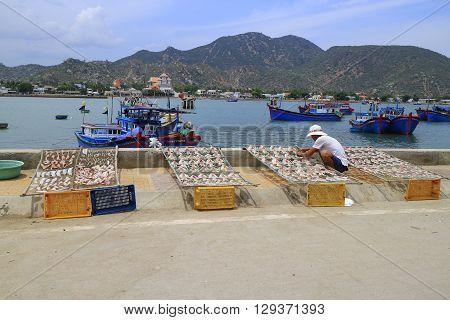 Nha Trang, Vietnam, May , 1, 2016:   Fish drying in Nha Trang, Vietnam Nha Trang, Vietnam