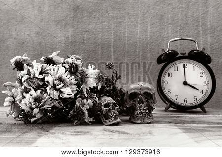Alarm clock on wooden at home  with flowers wither and skull
