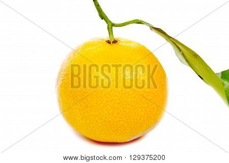 a mandarin with leaf isolated on a white background