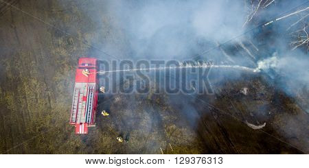 A firefighter extinguish a fire in the forest with a water hose