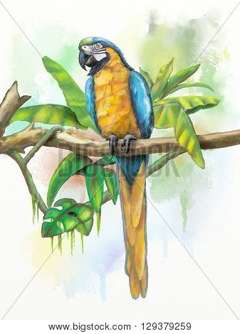 Blue and gold macaw with some tropical vegetation. Original digital watercolor.