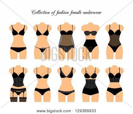 Female lingerie or female underwear set. Vector illustration