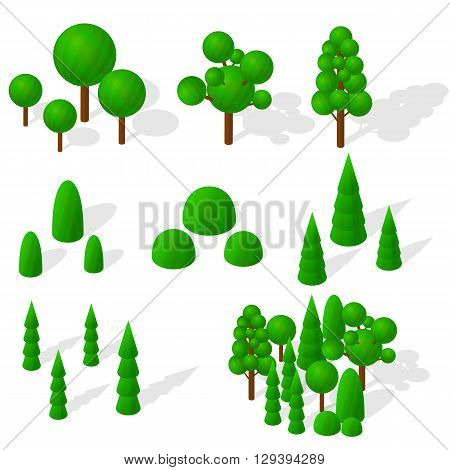 Isometric trees firs and shrubs. The green vegetation. Round deciduous trees. The ecology of the planet. Mixed forest. Trees with shadow. Vector illustration.