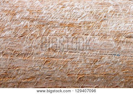 Texture of Fibrous timber extreme close up
