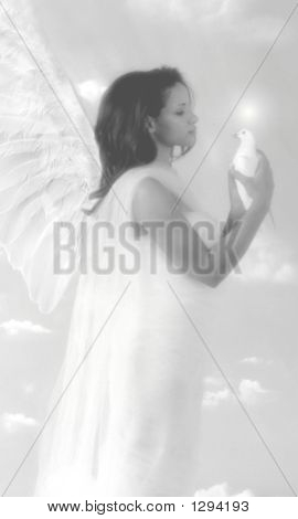 Angel With Dove_Black N White