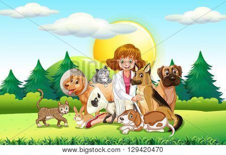 Female vet and many animals illustration