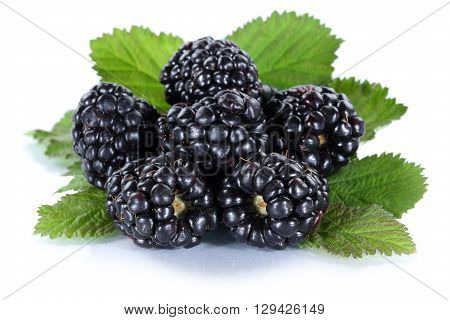 Blackberry Fruit Blackberries Berry Berries Fruits Isolated On White