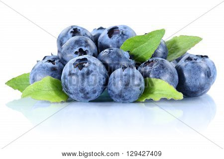 Blueberry Blueberries Fresh Berry Berries Bilberry Bilberries Isolated On White
