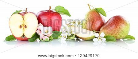 Apple And Pear Apples Pears Fruits Isolated On White