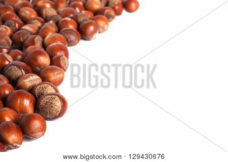 Fresh and shiny hazelnuts background. Free copy space for design.