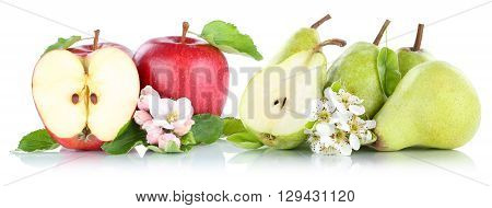 Apple And Pear Apples Pears Red Green Fruits Isolated On White