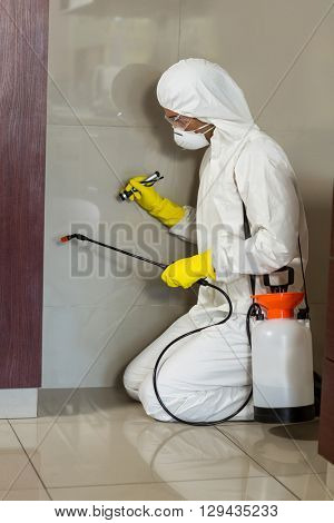 Side view of worker using insecticide on wall at home