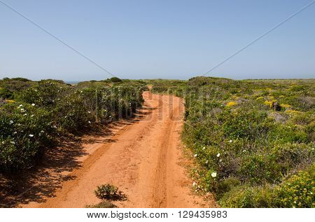 Empty dirt track with red soil in Portugal