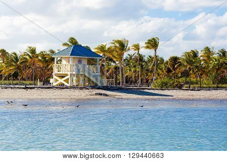 Beautiful Crandon Park Beach located in Key Biscayne in Miami, Florida, USA