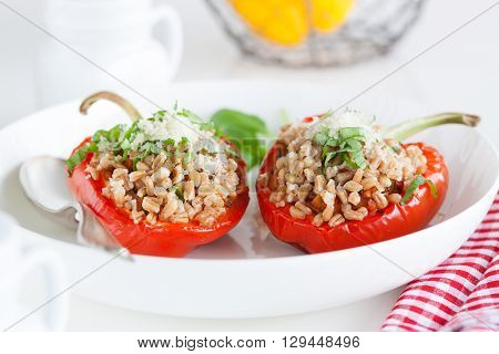 Stuffed vegetarian or vegan filled red paprika or bell pepper with spelt or brown rice and vegetables with cheese and fresh basil on a white plate on a kitchen background, closeup