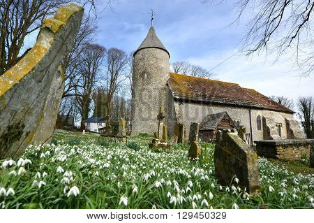 Snowdrops and round tower of Southease Church East Sussex