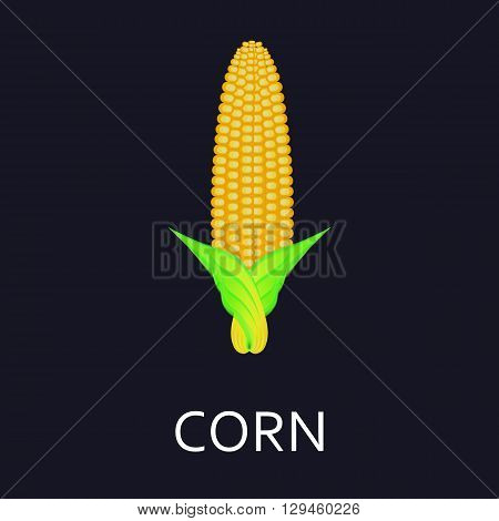 Corn Logo design, icons, symbols, vector, innovative and creative inspiration for business company, template collection, website or any promotion and marketing tools.