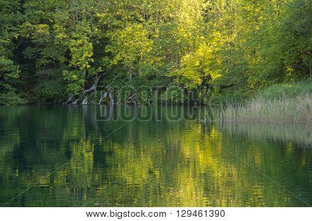 Beautiful nature of Plitvice lake in Croatia