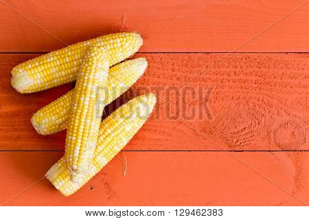 Four Fresh Sweet Corn On The Cob On Orange