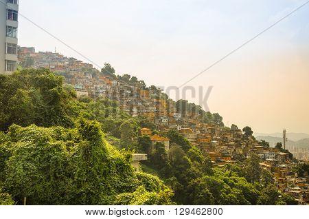 Buildings Of Favela Santa Marta Mountain Behind In Rio De Janeiro, Brazil.