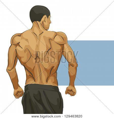 Muscular man body