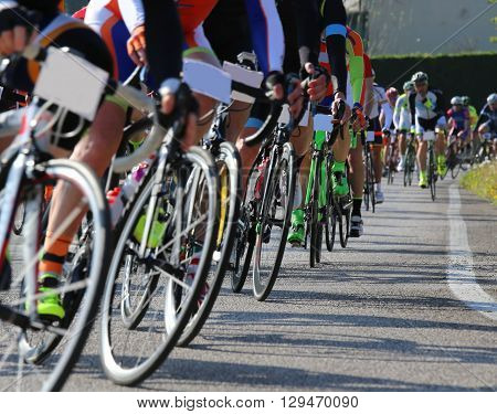 many race bike and professional cyclists during the cycling race on the road