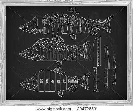 Beautiful Fresh Salmon And Knives Closeup Side View Drawn With Chalk. Pink Salmon Cutting Scheme Bla