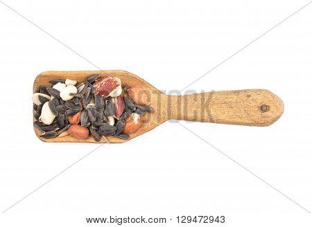 Bird Seed On Shovel