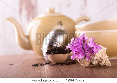 Several Pink Carnations In Seashell And Tea Set